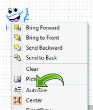 Autosize options